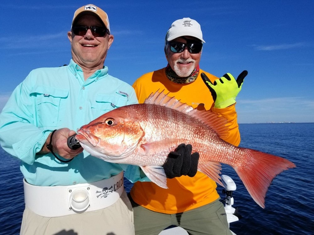 15 pound red snapper
